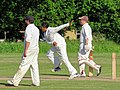 Hatfield Heath CC v. Netteswell CC on Hatfield Heath village green, Essex, England 52.jpg