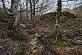 Haut-Languedoc, Rosis cf8.jpg