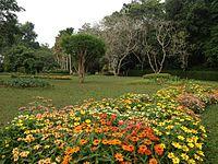 Henarathgoda Botanical Garden.jpg