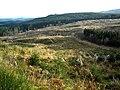Hillside in Loch Ard Forest - geograph.org.uk - 1056393.jpg