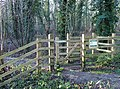 Himley Plantation Entrance, Staffordshire - geograph.org.uk - 632973.jpg