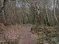 Hinton, Cranemoor Common - geograph.org.uk - 1227054.jpg