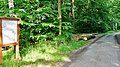 Historische Hohlwege bei Warmbronn - panoramio.jpg