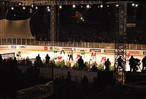 Austrian Hockey League - HDD Olimpija vs EC KAC at Bežigrad Stadium during the 2012–13 Austrian Hockey League season