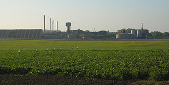 Sugar beet - A sugar beet farm in Belgium: Beyond the field is the sugar factory.