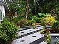 Home garden in kerala.jpg