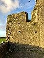 Hore Abbey, Caiseal, Éire - 46585860521.jpg