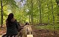 Horse carriage on Visingsö.jpg