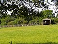 Horse in a house behind Gorley Vale Farm, New Forest - geograph.org.uk - 185112.jpg