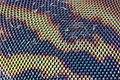 Horsefly eye detail.jpg