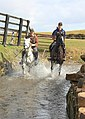 Horses in Stream - geograph.org.uk - 1762719.jpg