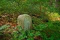 Hraniční kámen poblíž kaple svaté Anny, Hadinec, Bartošovice v Orlických horách, okres Rychnov nad Kněžnou.jpg