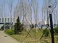 Huangdao, Qingdao, Shandong, China - panoramio (892).jpg