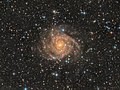IC342 Galaxy.jpg