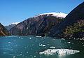 Iceberg Bay (3763589979).jpg