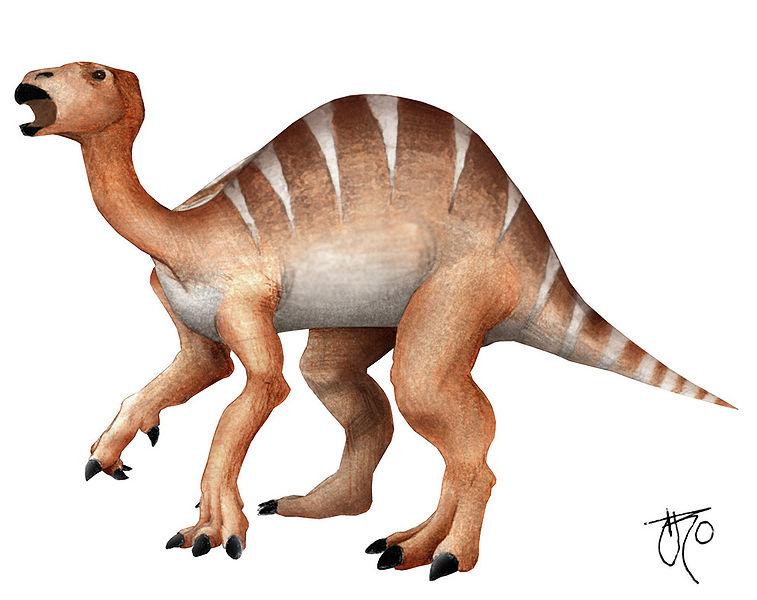 File:Iguanodonte.jpg