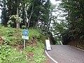 Iiboshi Pass (R265) - panoramio.jpg