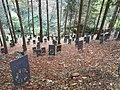 Il bosco delle Penne Mozze.jpg