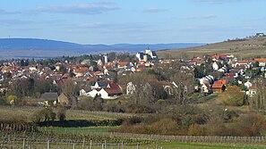 Ingelheim2009