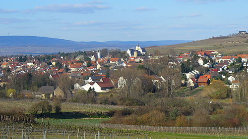 Ingelheim im Winter 2009