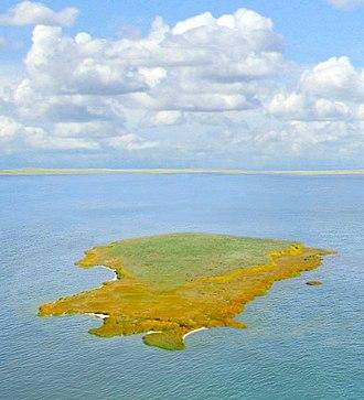 Lake Razelm - Popina Island