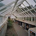 Interieur grote houten kas - Goor - 20405149 - RCE.jpg