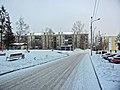 Irkutsk. Akademgorodok. February 2013 - panoramio (15).jpg