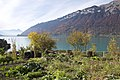 Iseltwald - panoramio - Patrick Nouhailler's… (7).jpg