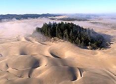 Национальная зона отдыха Орегон-Дьюнс (англ.)русск. близ Флоренса  (англ.)русск. 77c27f3083014