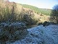 Island in the Afon Ystwyth, Grogwynion - geograph.org.uk - 1076204.jpg