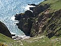 Ivy Cove - geograph.org.uk - 1267068.jpg