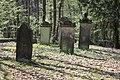 Jüdischer Friedhof Hoyerhagen 20090413 044.JPG