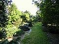 J. C. Raulston Arboretum - DSC06184.JPG