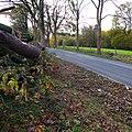 Jacob's Way (Bike) Beyenburg-Lennep. Reader-18.jpg