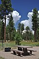 Jacob Lake Campground 2.jpg