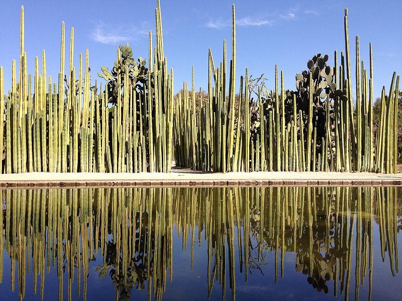 Jardim de Oaxaca