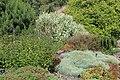 Jardin Botanique Royal Édimbourg 11.jpg