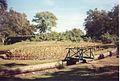 Jardin de Pamplemousses (3004477021).jpg