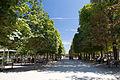 Jardin des Tuileries, Paris 2 August 2015 001.jpg