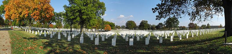 Panoramic view showing row upon row of simple white stone headstones converging in the distance.