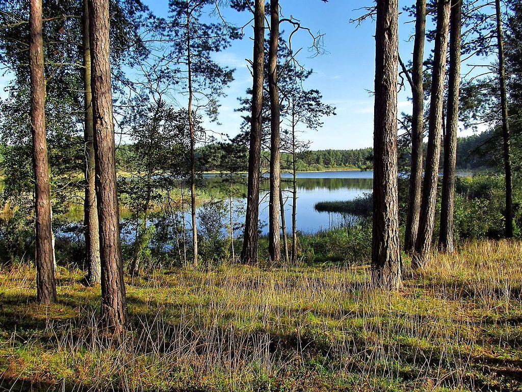 1024px-Jezioro_Szarmachy_w_Lubikach.jpg