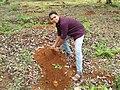 Jimmy Rakesh Planting Trees.jpg