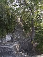 Jungle covered ruin Coba 2 (4374410534).jpg