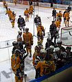 Kärpät vs Lukko 20121027 04.JPG