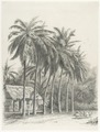 KITLV - 37A221 - Borret, Arnoldus - Country lane with a laden donkey cart and a house surrounded by coconut trees - Pencil - Circa 1880.tif