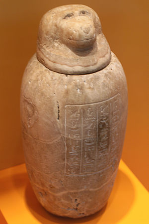Hapi (Son of Horus) - Image: Kanope Altägypten 26. Dynastie im Überseemuseum 2872