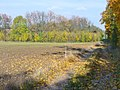 Karpzow - Wanderweg (Footpath) - geo.hlipp.de - 43316.jpg