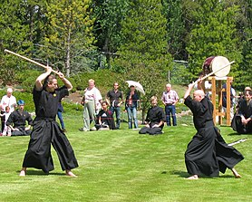 Kenjutsu at the Japanese Garden.jpg