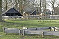 Kinderboerderij Wolfslaar P1340989.jpg