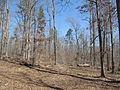 Kings Mountain National Military Park - South Carolina (8558886008) (2).jpg